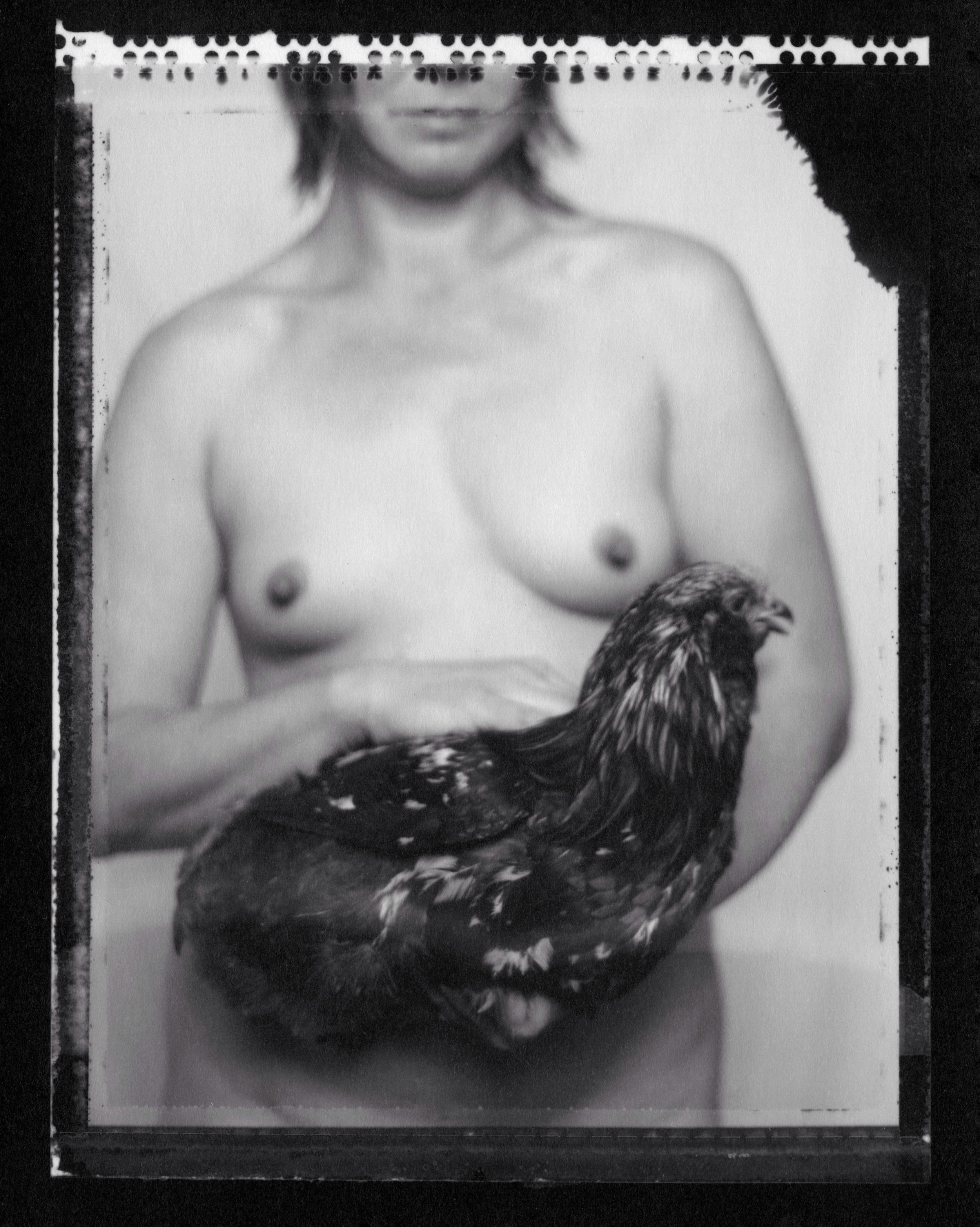 Organic Chicken, 2010
