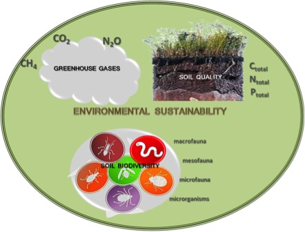 An integrated view of the environmental sustainability indicators