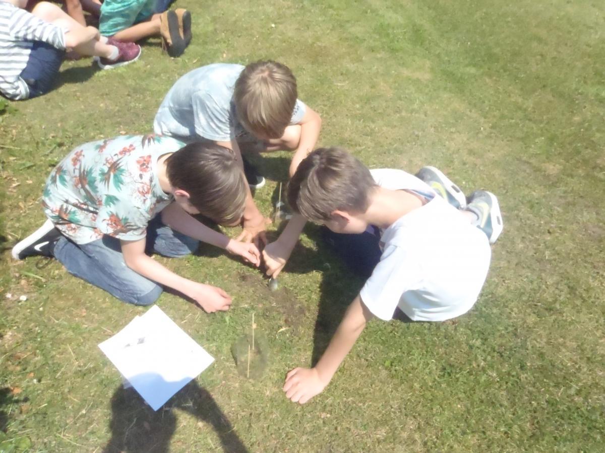 School children bury teabags. Photo credit Judith Sarneel