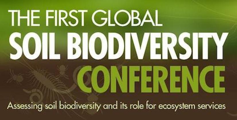 Global-Soil-Biodiversity-940x300 copy.jpg
