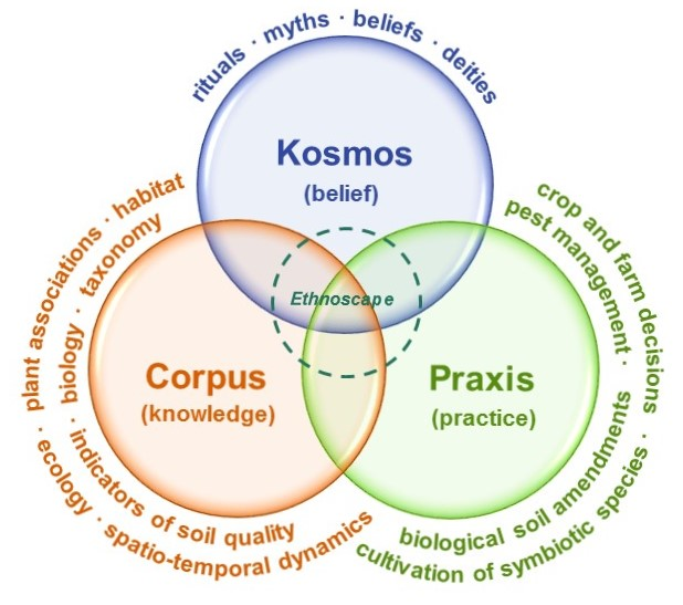 Categorisation of farmers' knowledge of soil biota, based on the 'knowledge-practice-belief' complex in ethnoecology. From Pauli et al. 2016