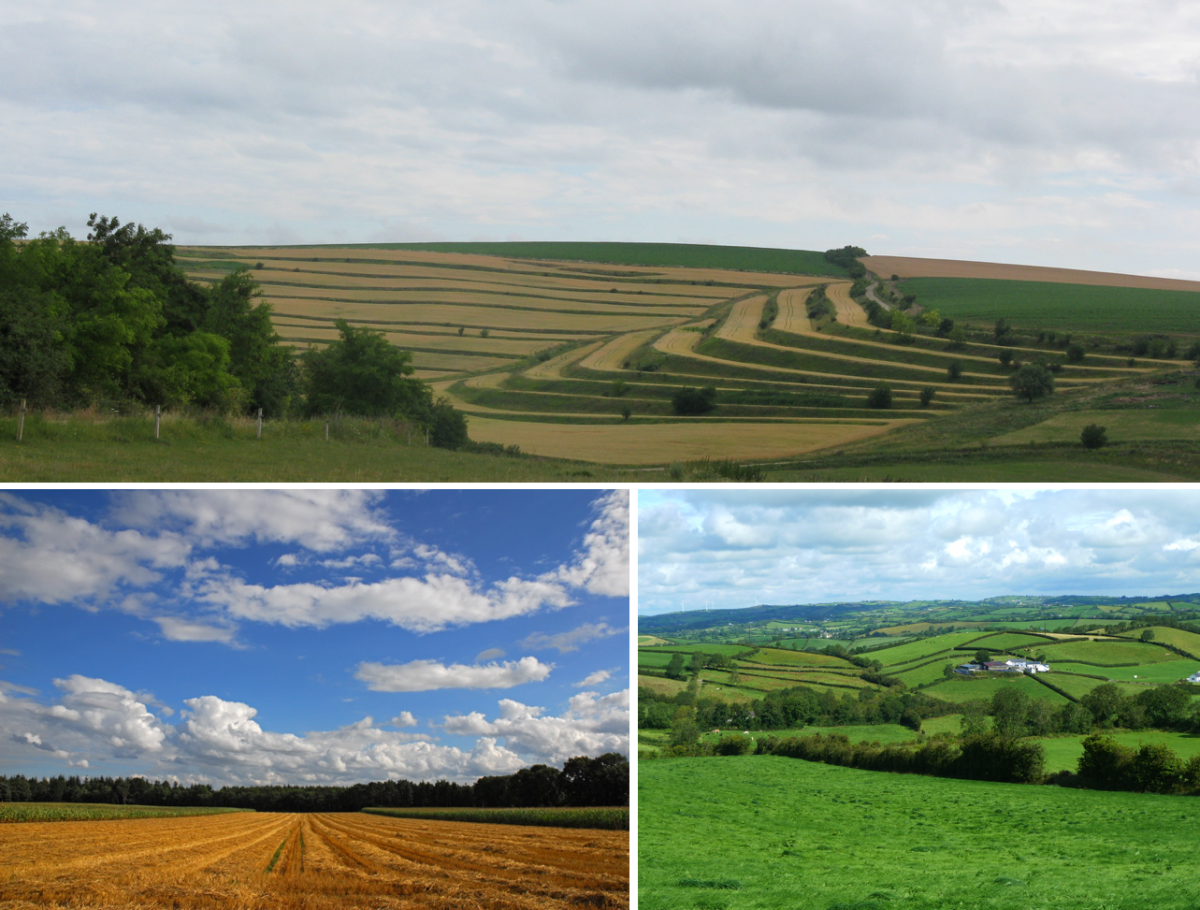 European landscapes, Top: Terraced fields, credit: Rusu Teodor, USAMV Cluj Lower left: Agricultural field, credit: Eckhard Pieper, LWK Niedersachsen Lower right: Irish Soil Information System project (Teagasc, Ireland)