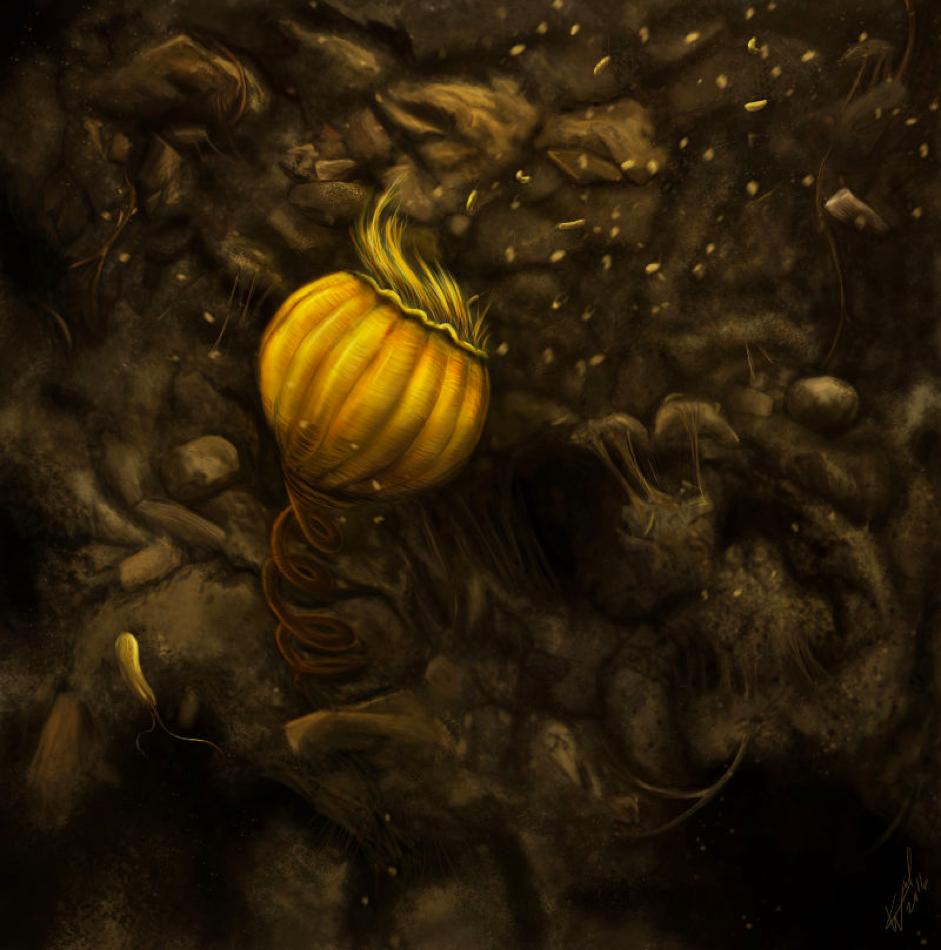 Vorticella. By Katelyn Weel