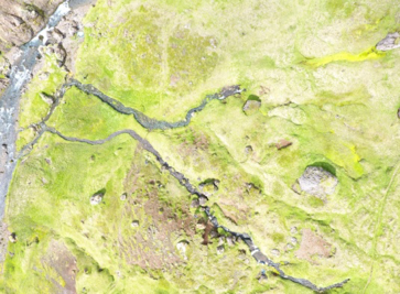 Two Icelandic streams – one is 5 ºC and the other is 20 °C and are only meters apart. Image: M. Jackson