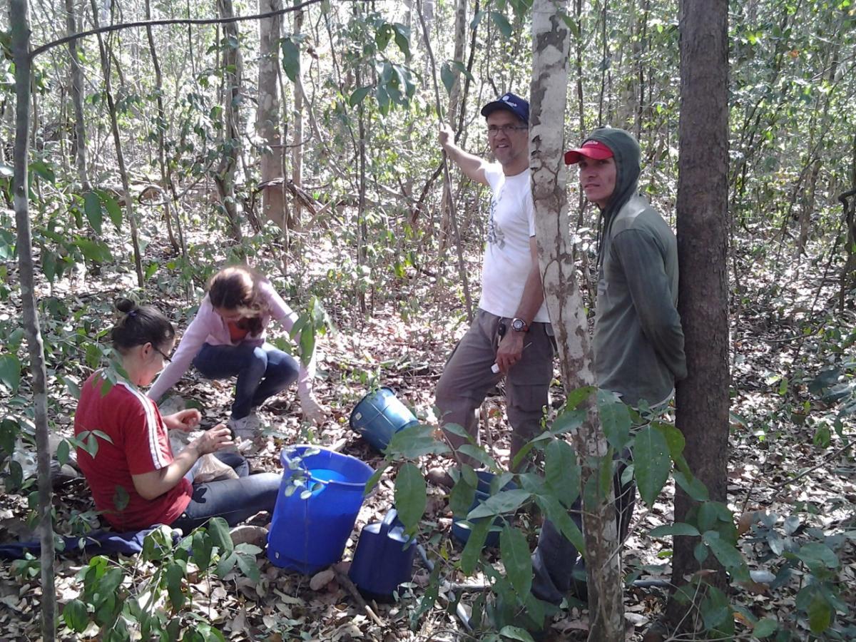Sampling effort: Ademir (white shirt) and his team sampling in the Cerrado.