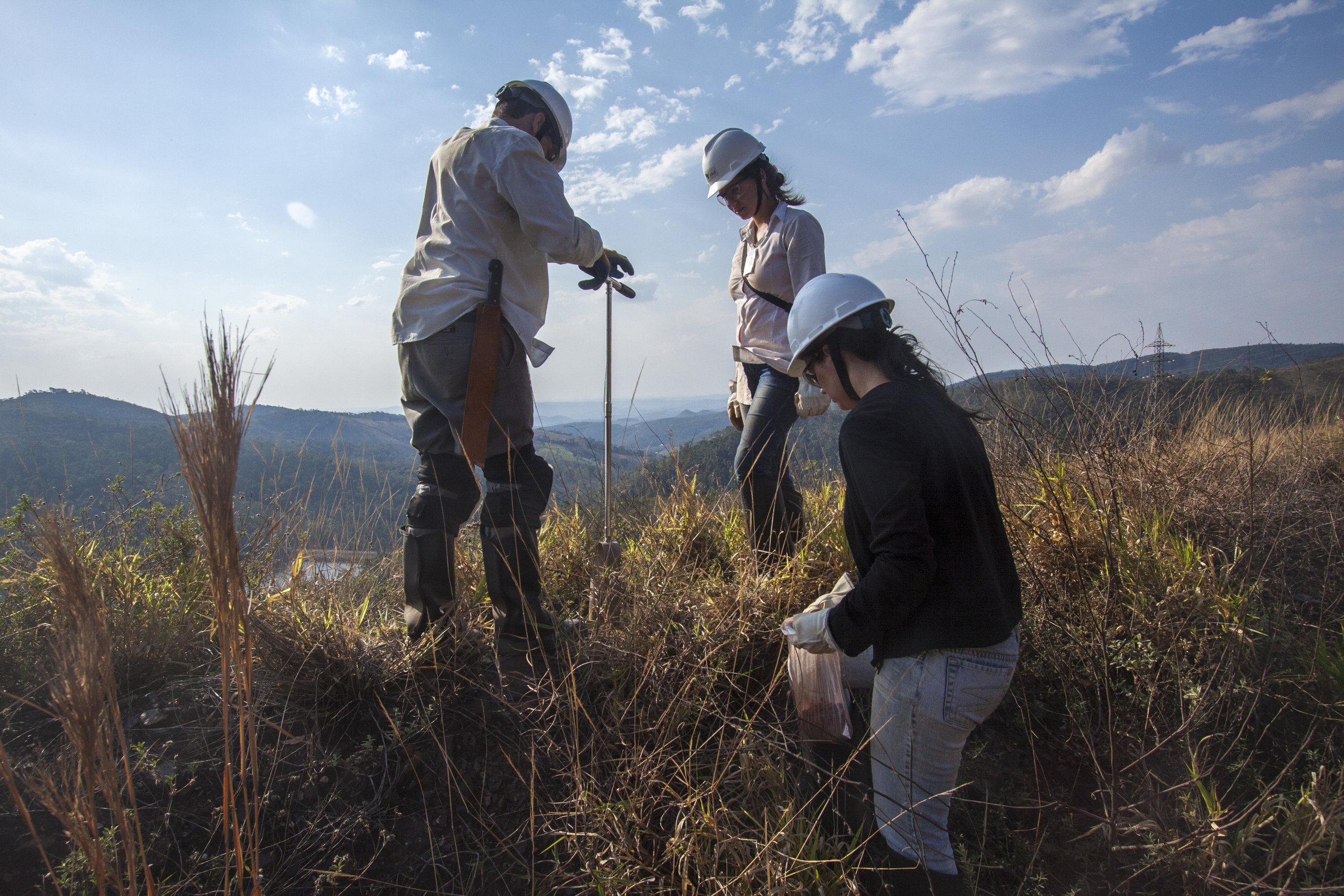 Soil sampling in Brazil