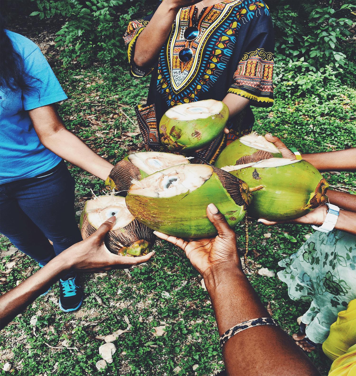 coconutsresize-min.png