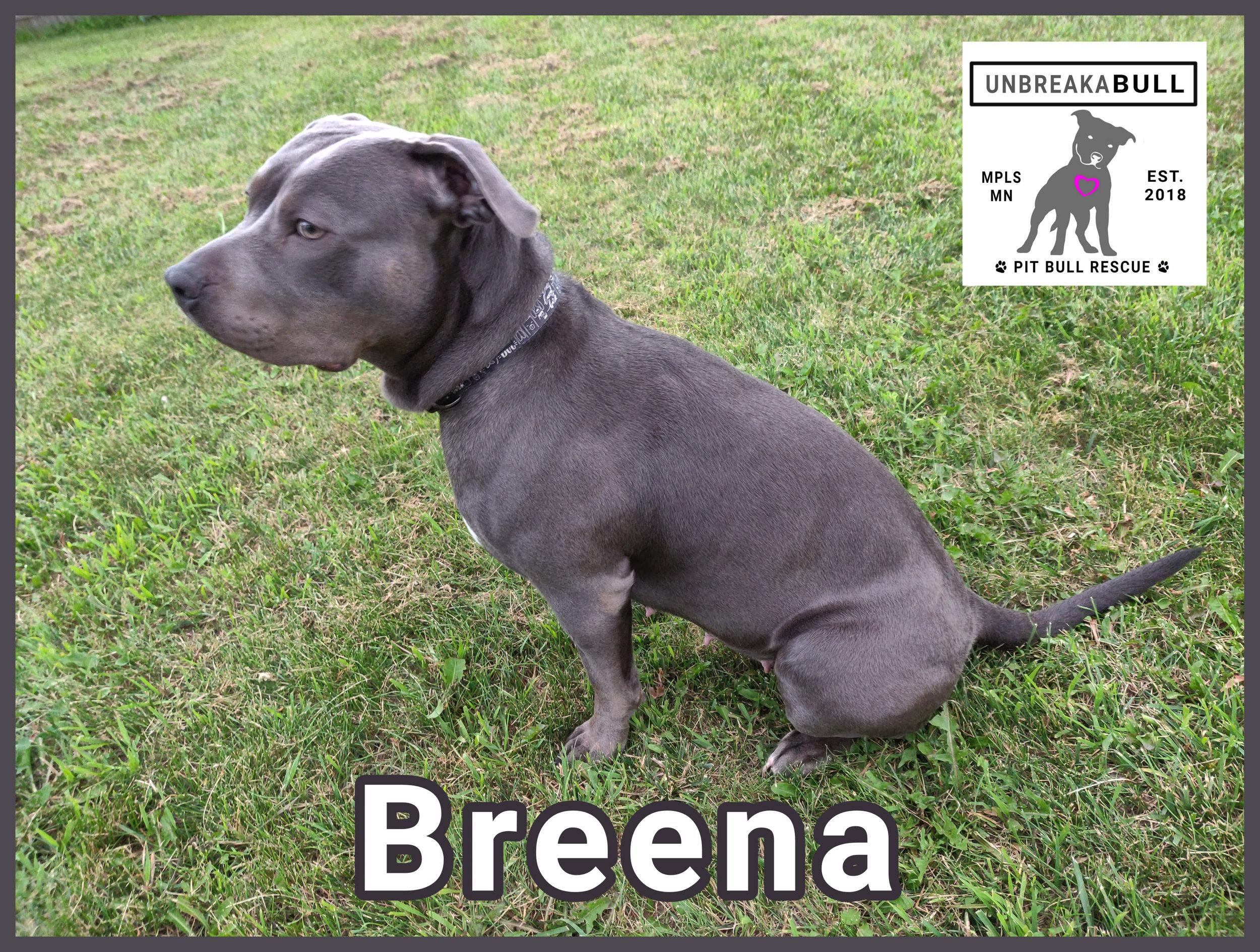 Breena8.jpg