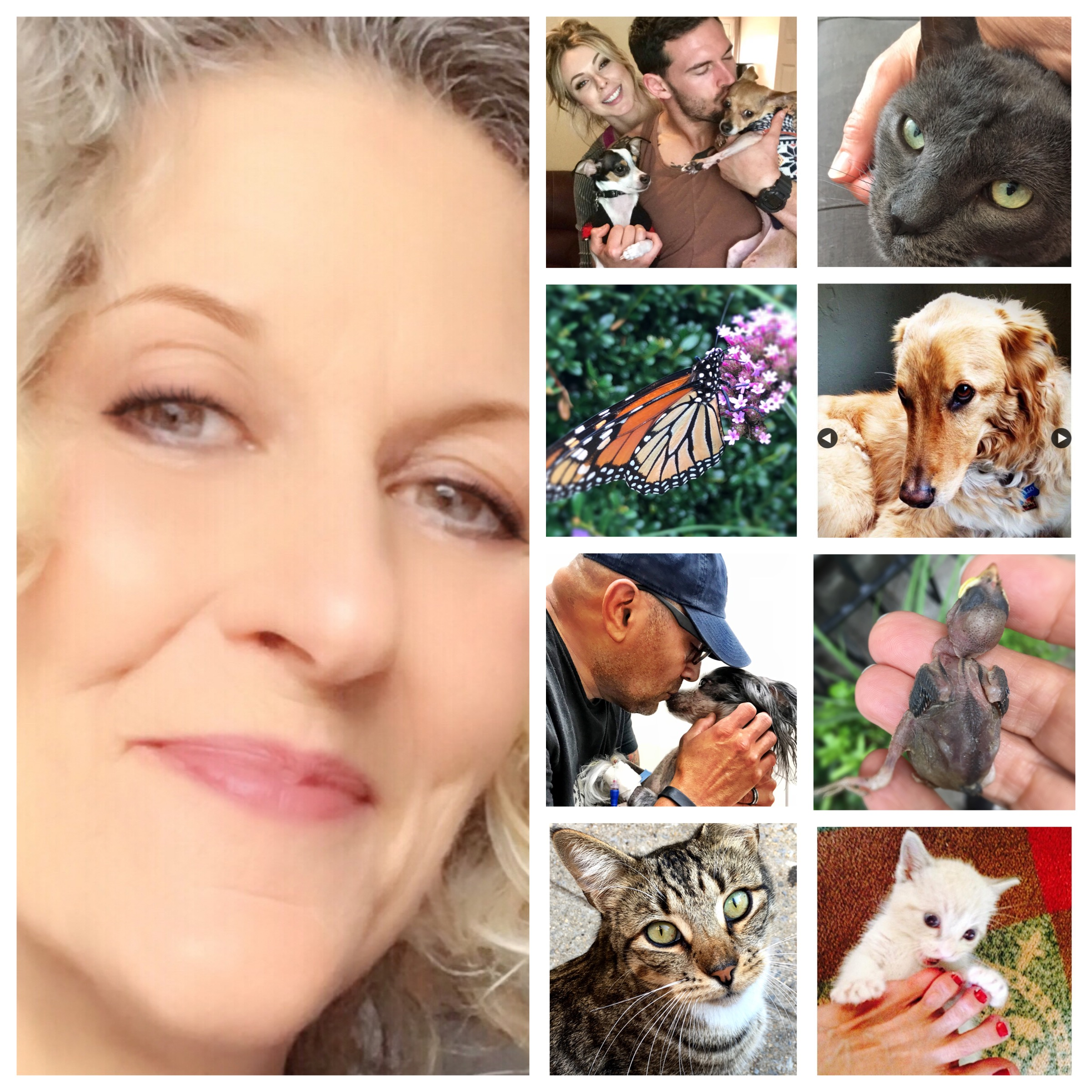 a collage that shows pet celebrant laura king surrounded by photos representing the life cycle of animals, pet adoption ceremonies and end of life ceremonies