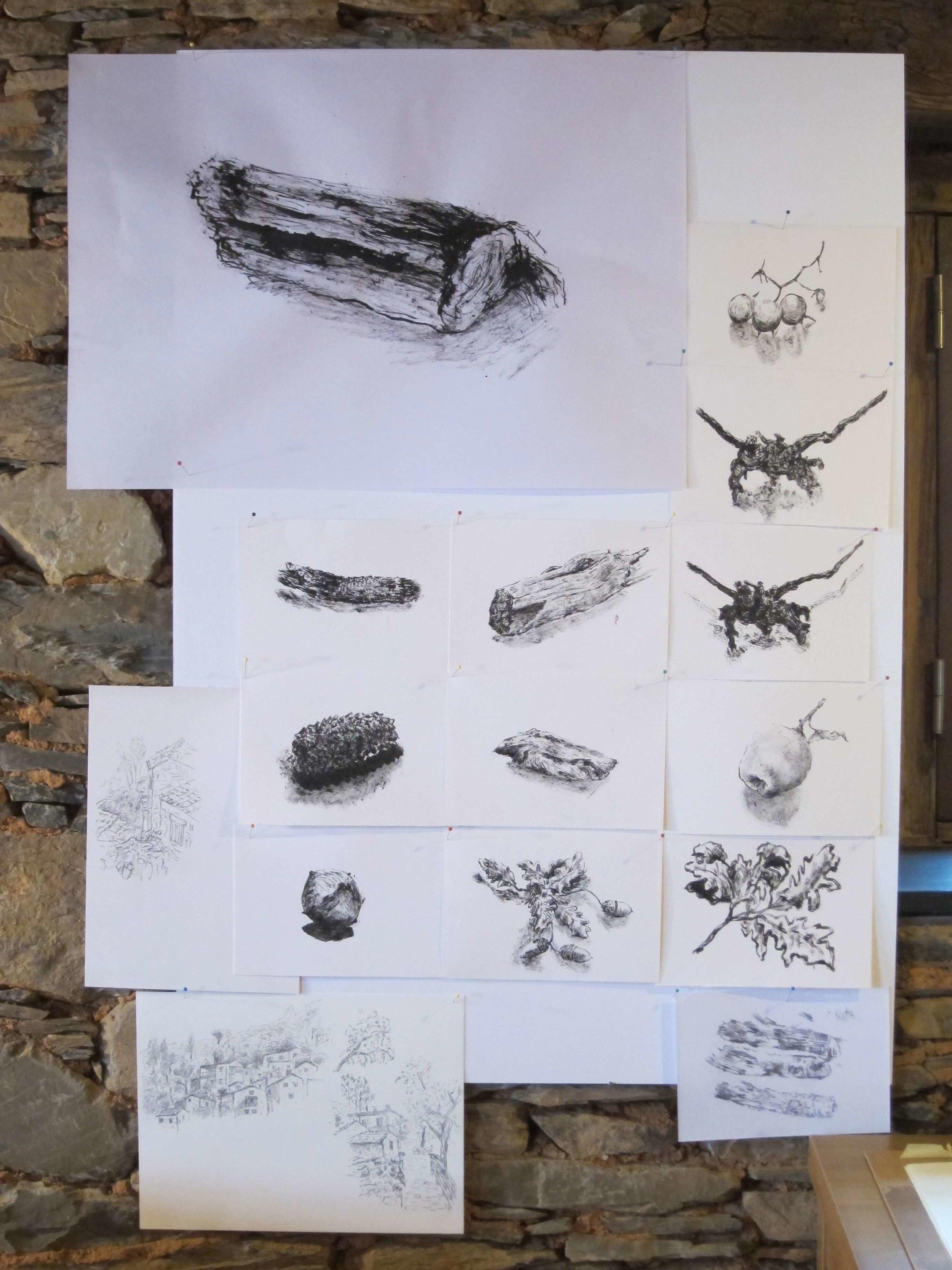 5 dias de desenho na natureza10.jpg