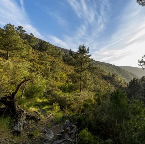 cerdeira-ecotourism.jpg