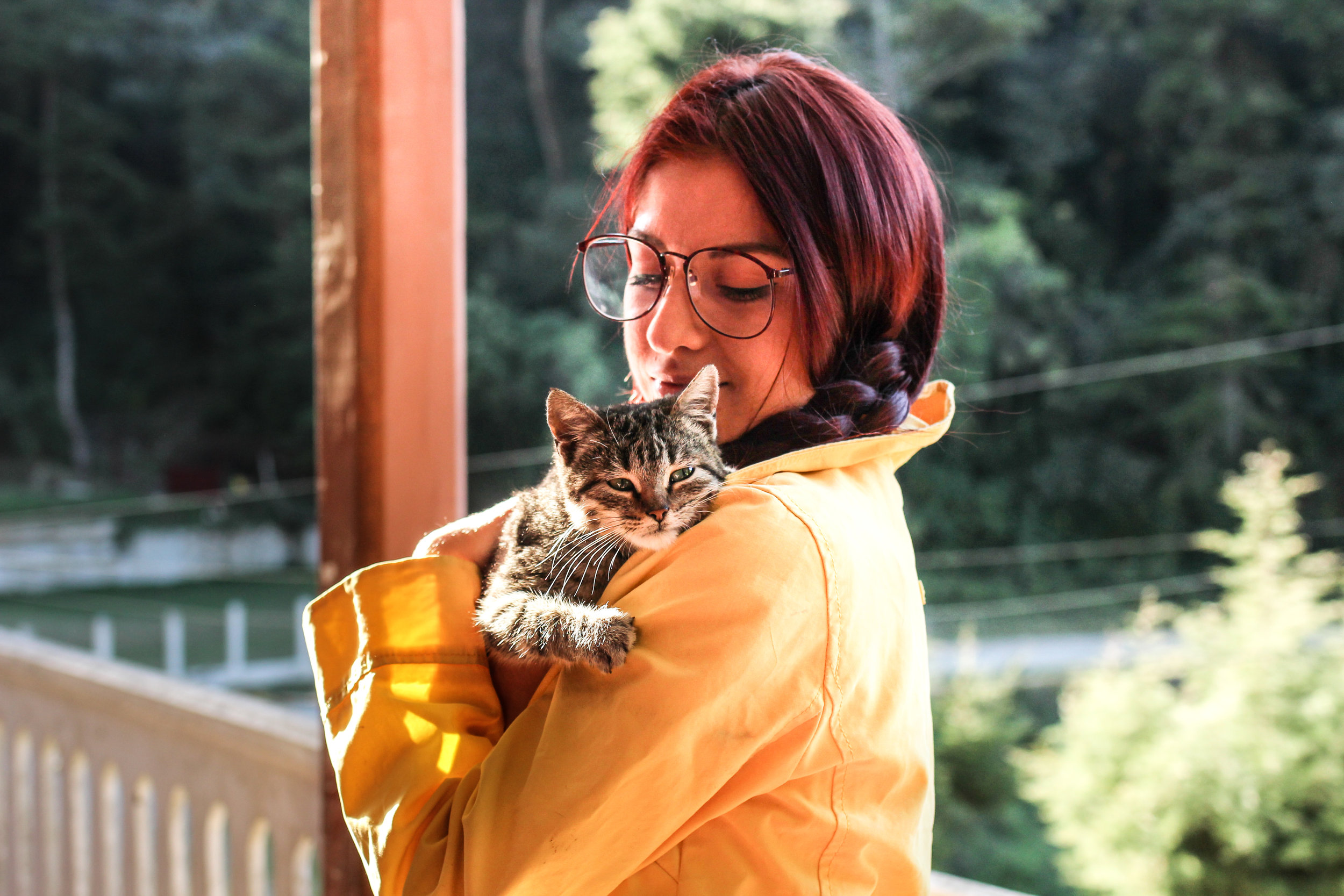 woman holding cat in hand