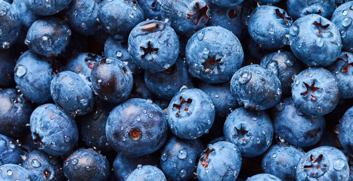 FreshBlueberries.jpg