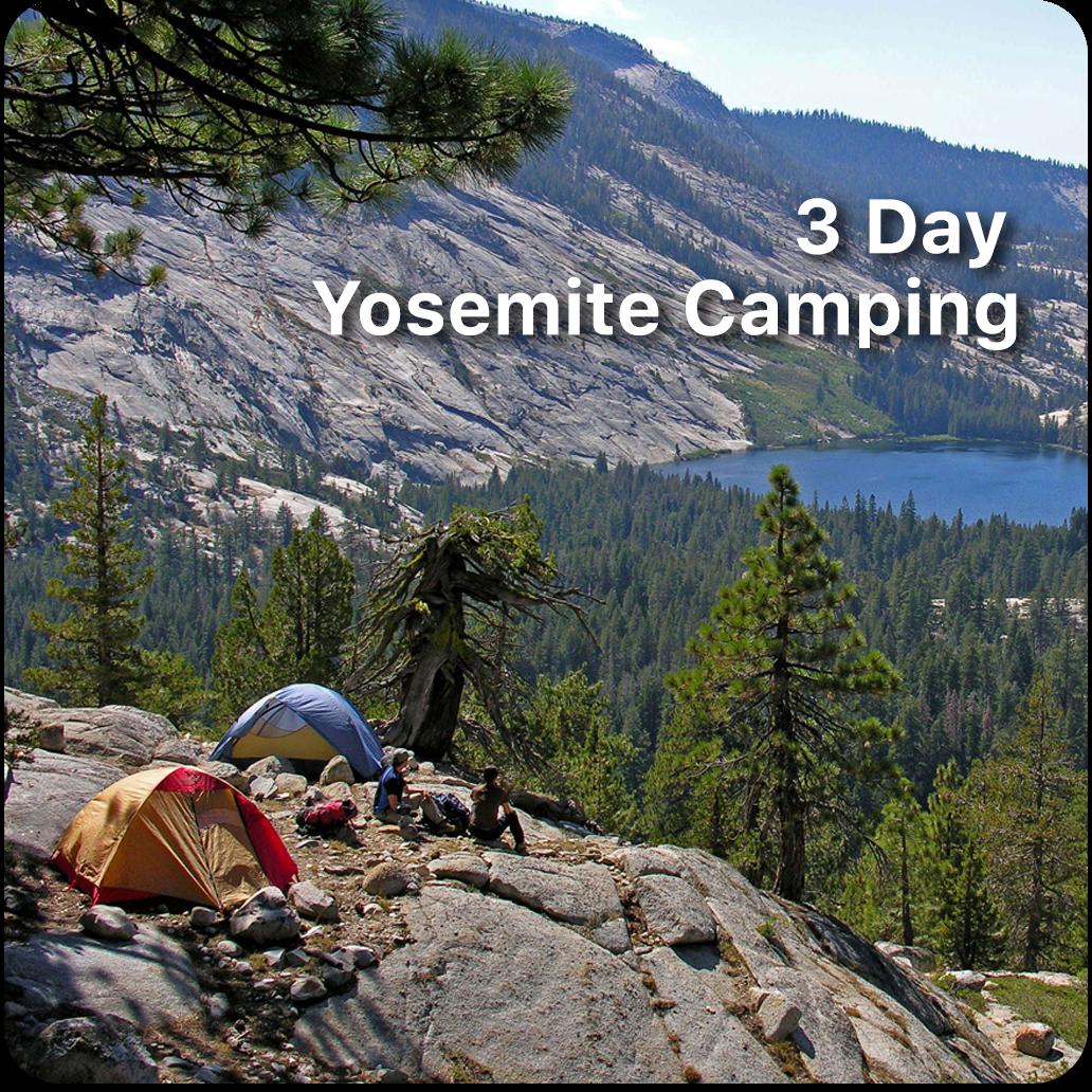 website- yosemite camping.png
