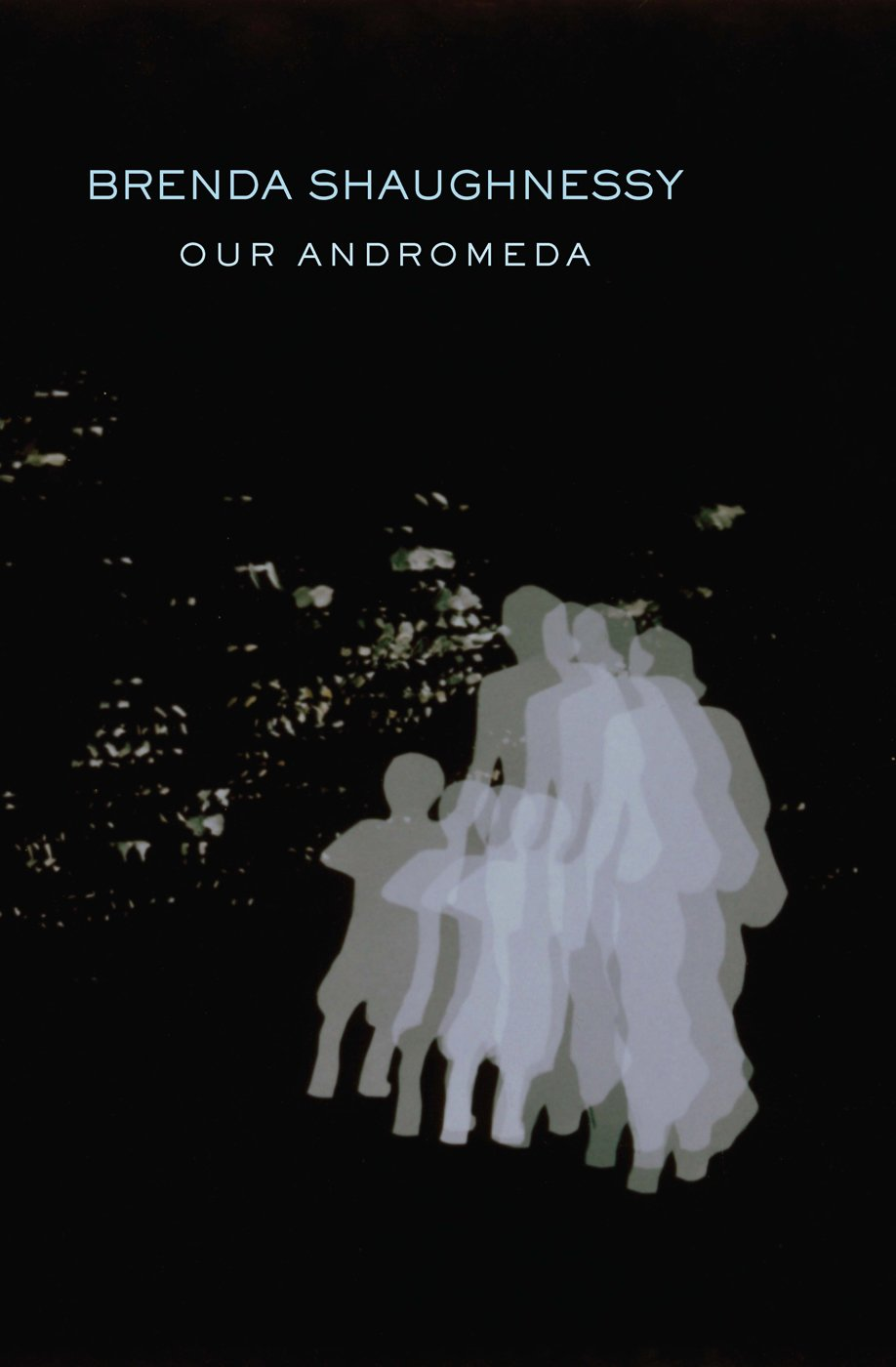 Brenda Shaughnessy's Our Andromeda