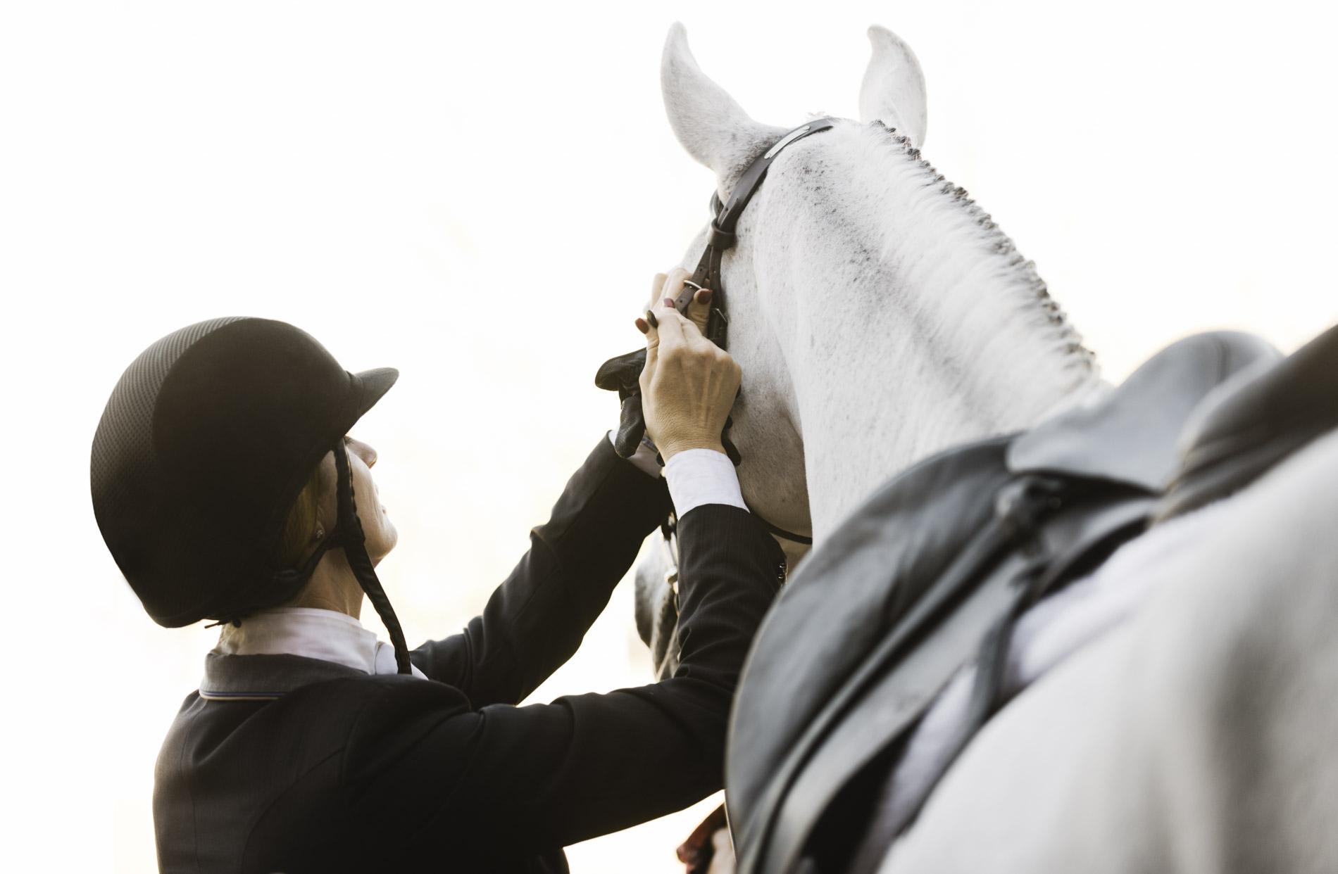Copy of Phoenix Equestrian Photographers