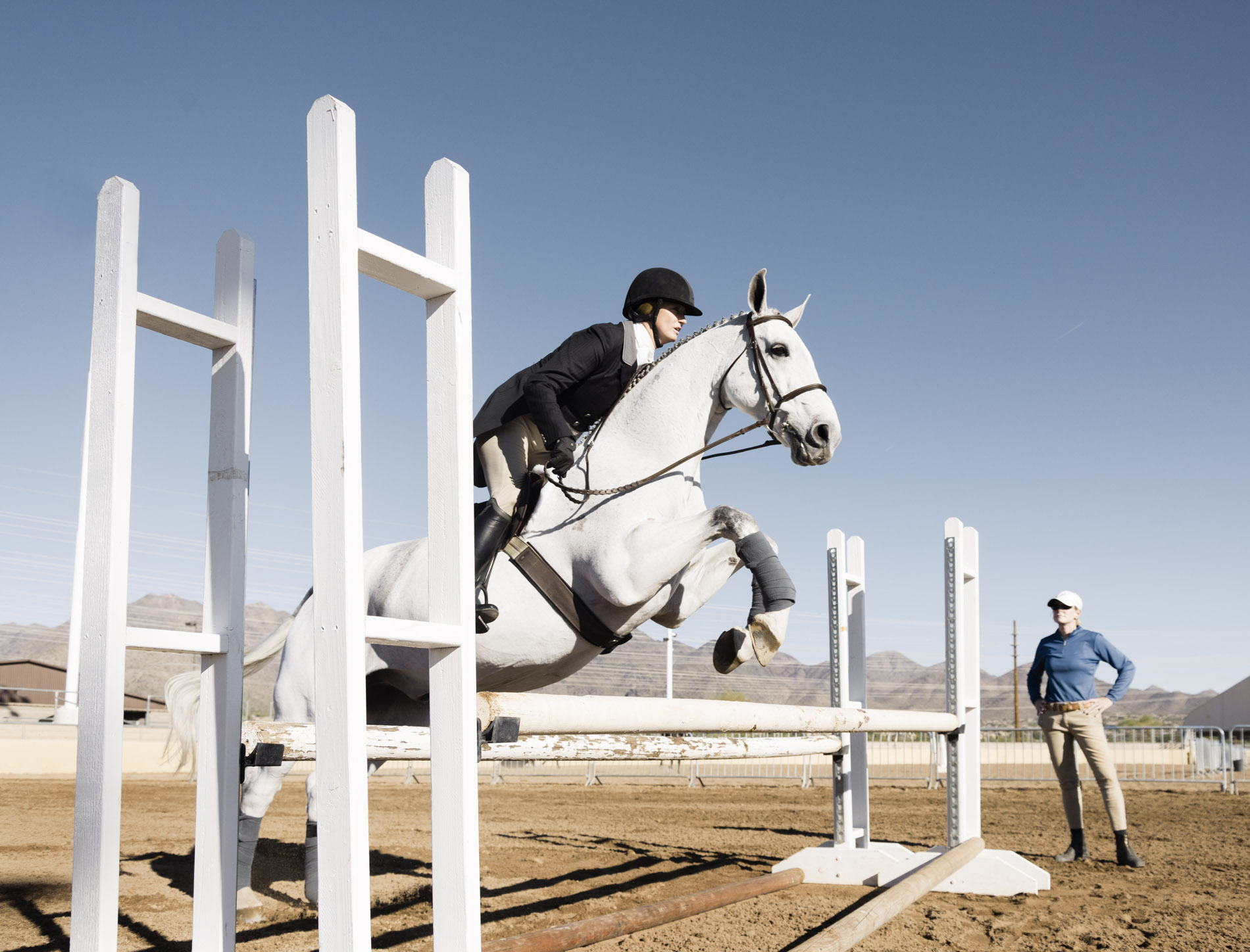 Equine life in the southwest at Bristol Show Stable