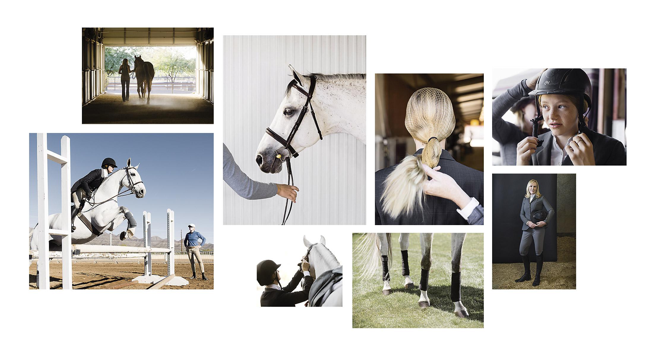 Phoenix-Equine-photographers