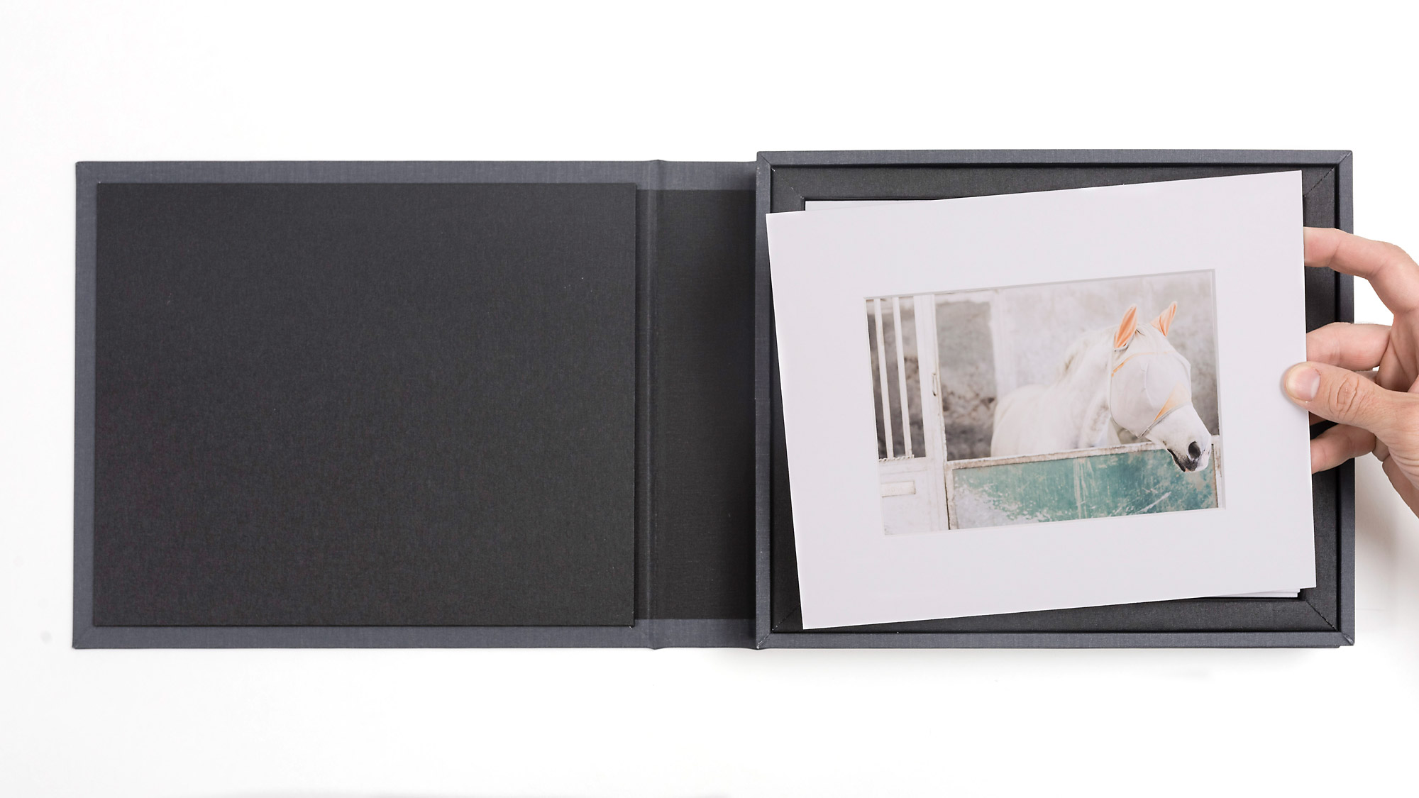 Portfolio Boxes  - with Matted Prints