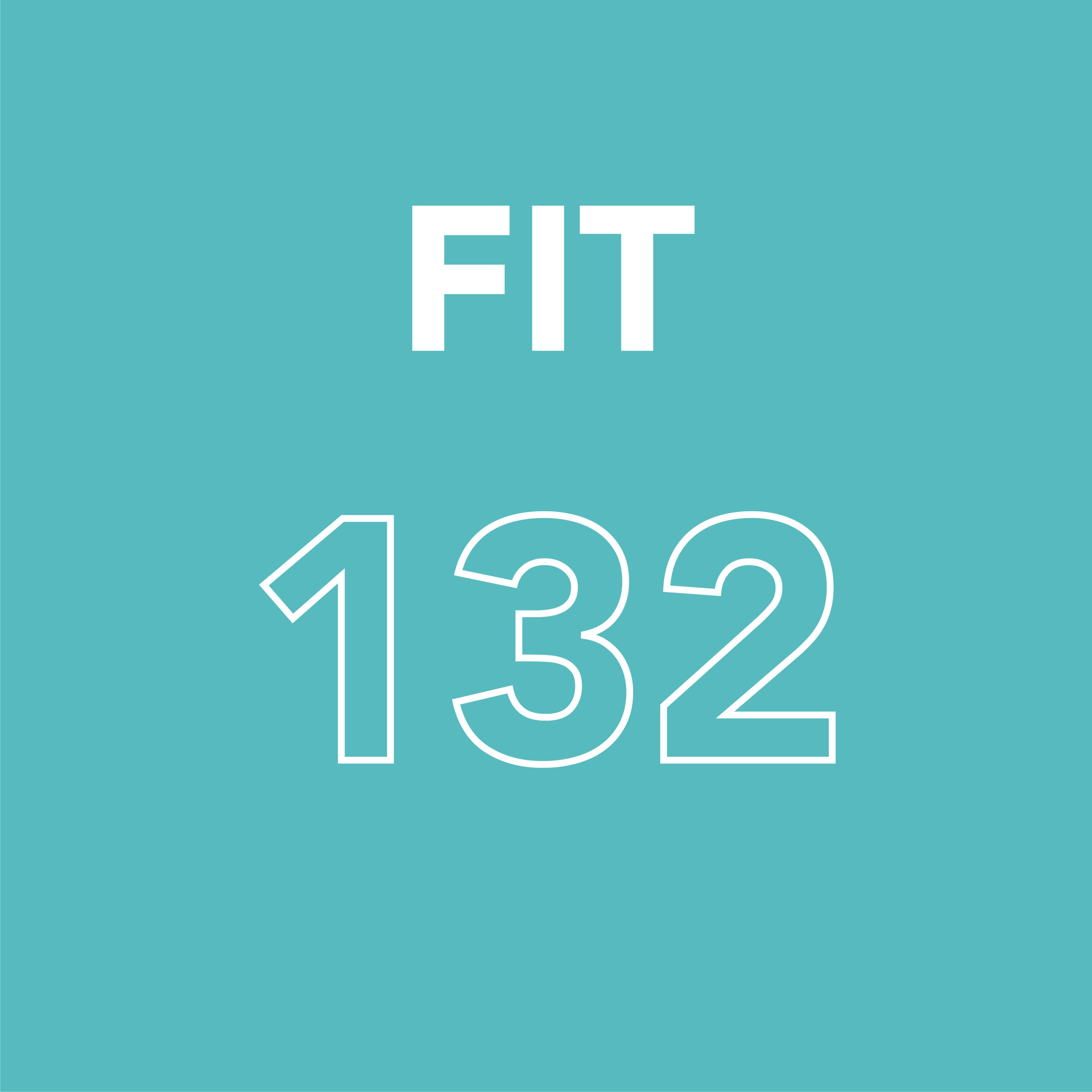 FIT 132 Test