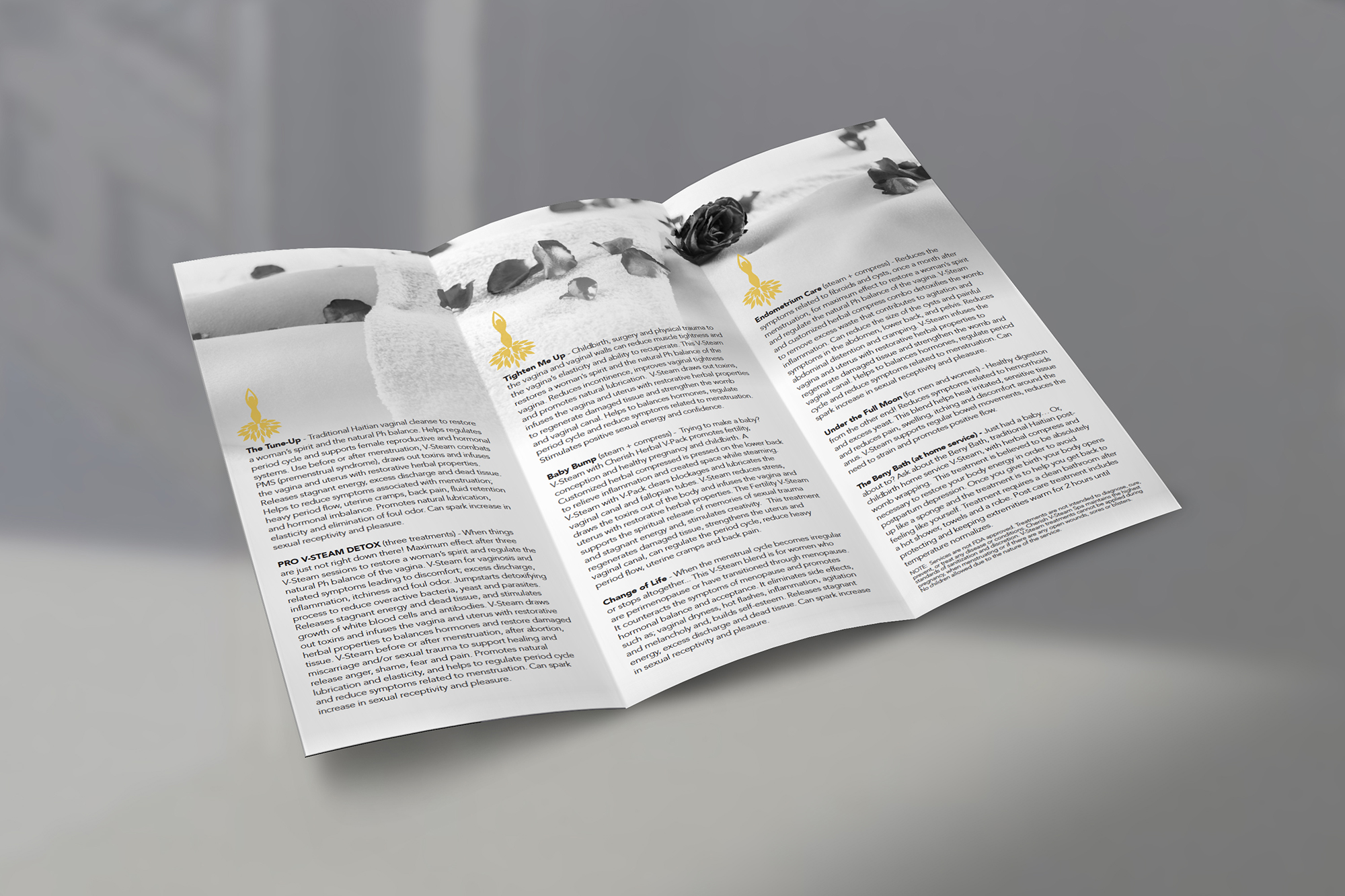 CherishV-Spa Brochure-MockUP.jpg