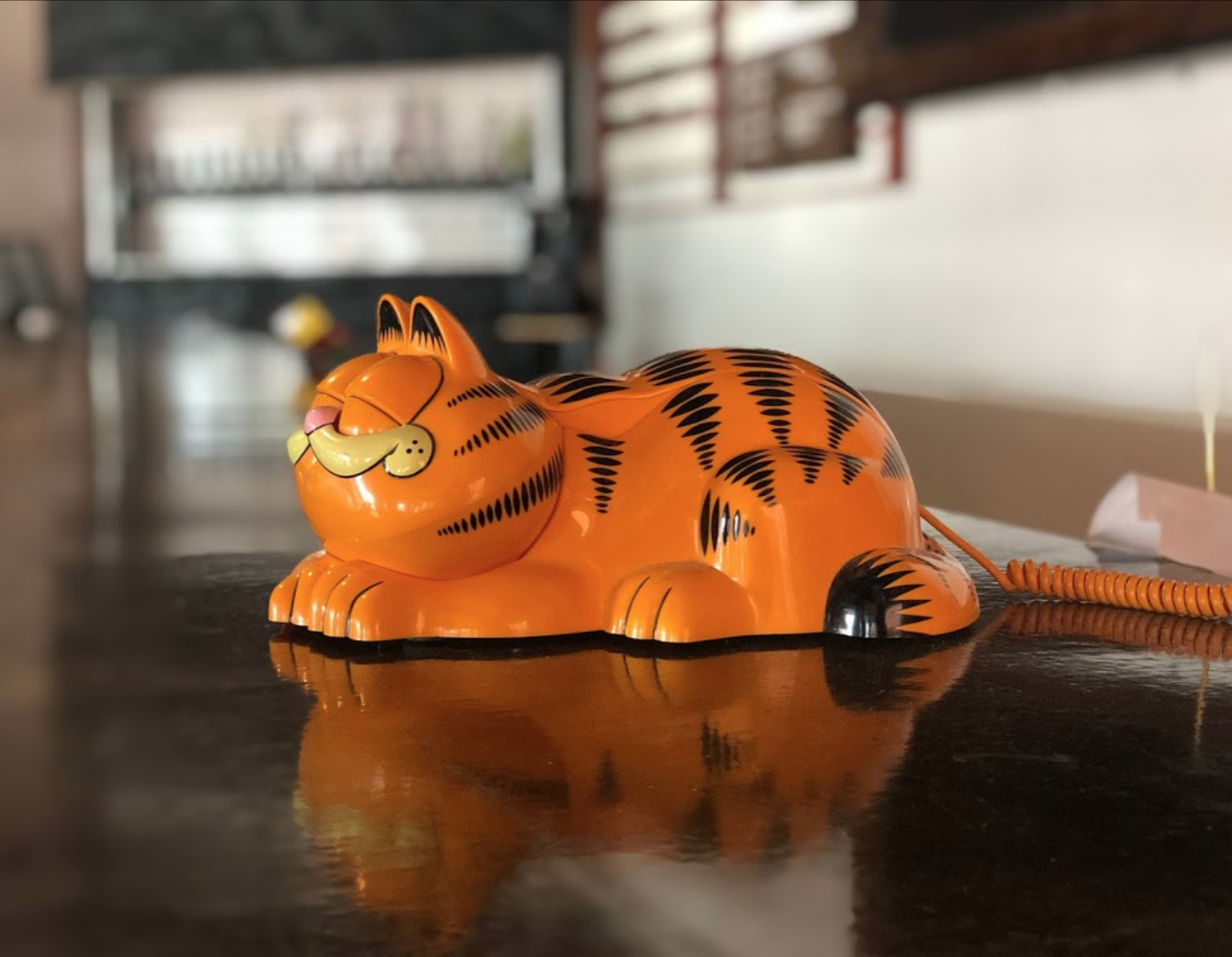Garfield the Nostalgia Brewery Cat