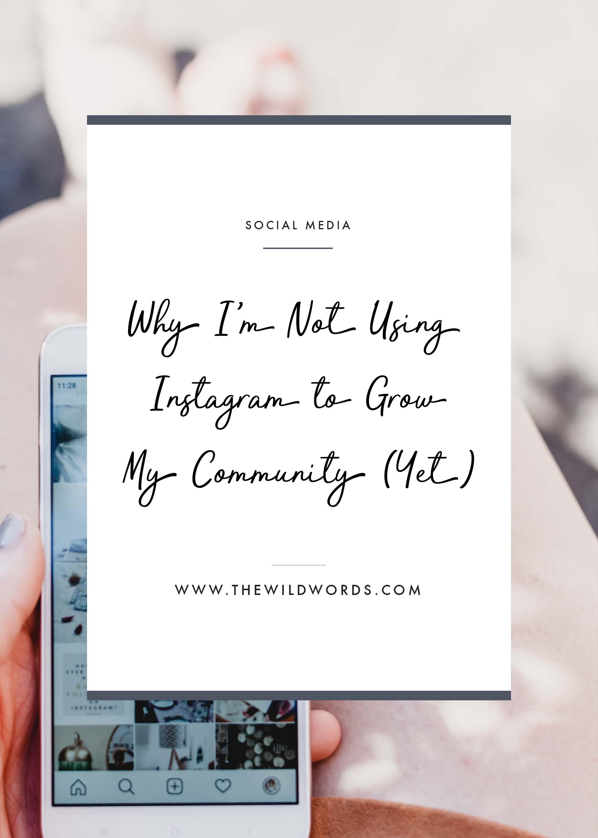 Why I'm Not Using Instagram to Build My Brand | Wild Words #Instagram #SocialMedia #GirlBoss #CommunityBuilding
