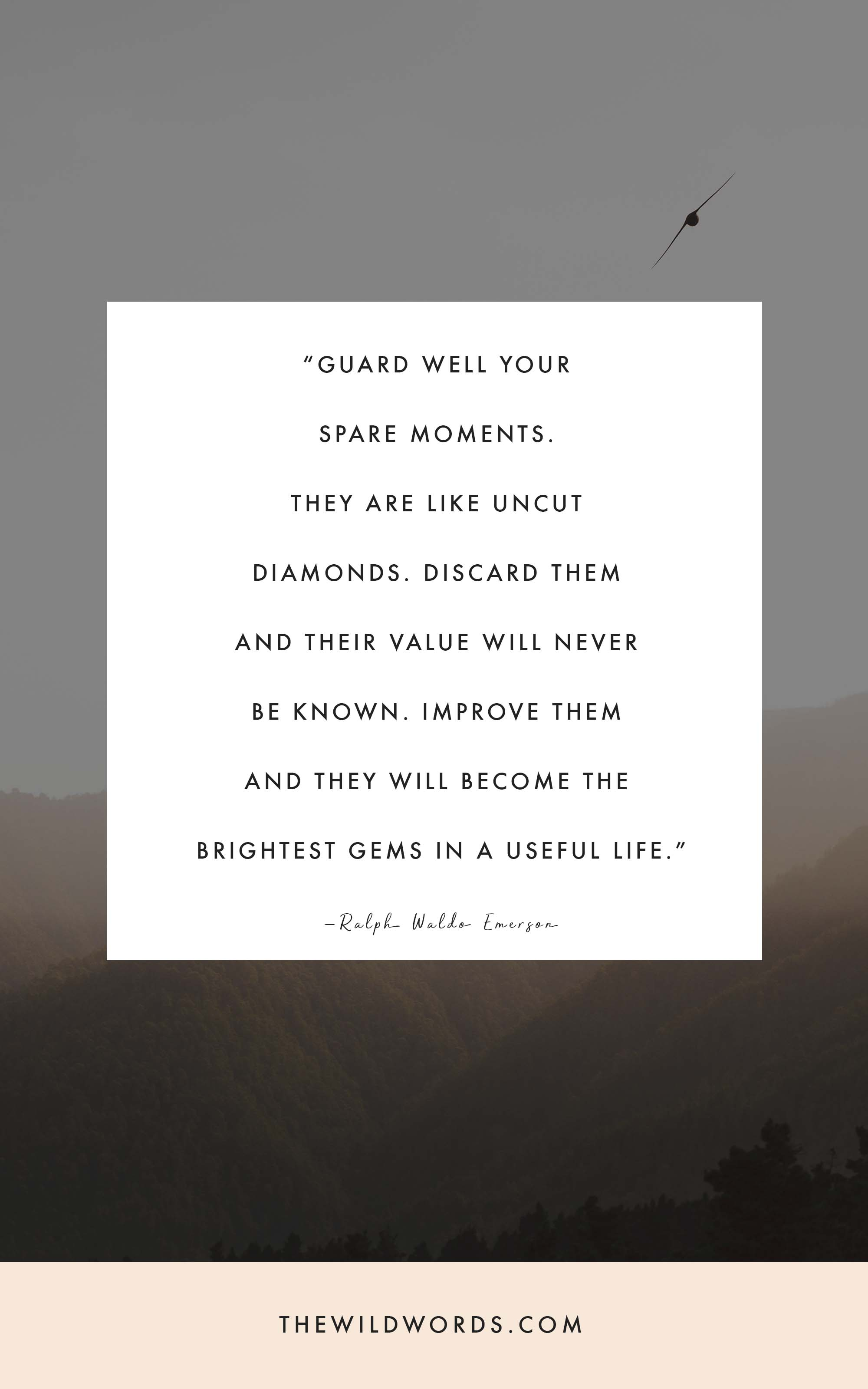 """""""Guard well your spare moments."""" 