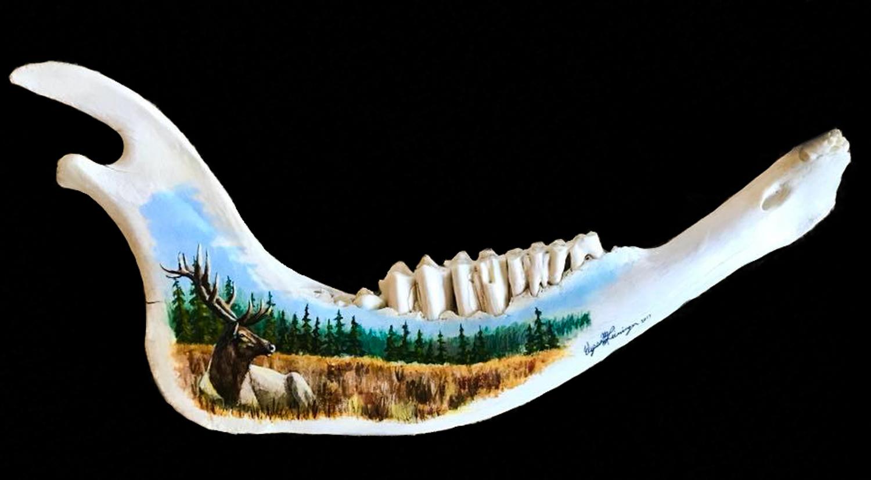 Jaw Bone Elk.jpg