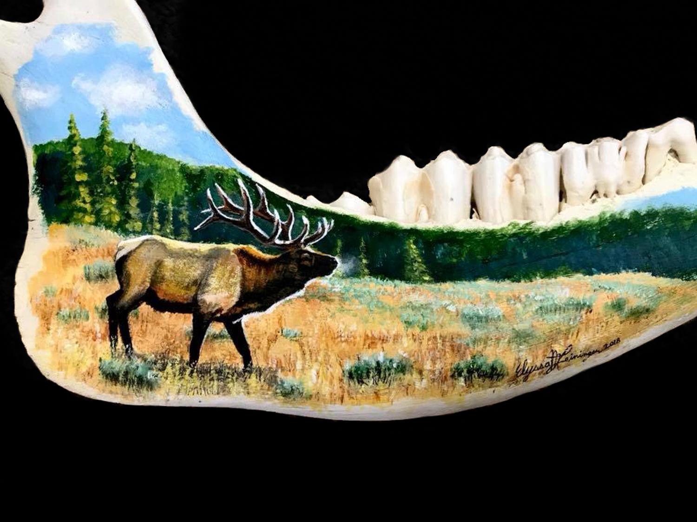 Jaw Bone Elk 2.jpg