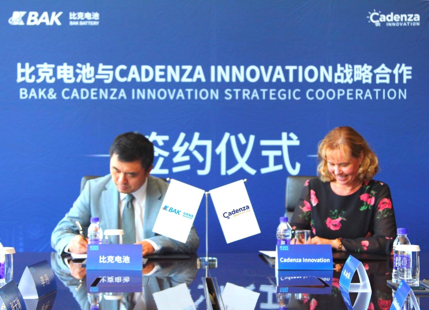 Cadenza+Innovations+-+12192012V-0.jpg