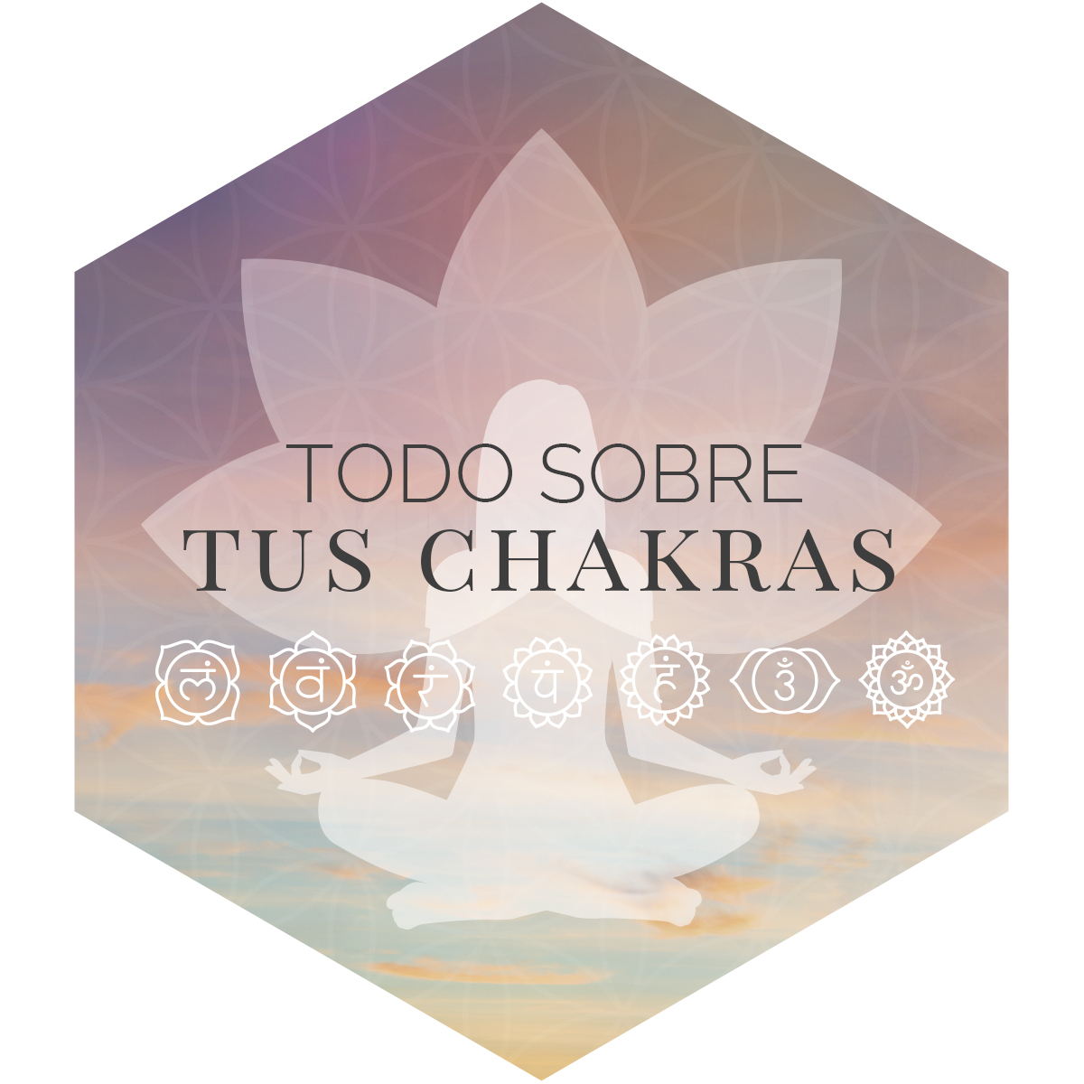 TODO SOBRE TUS CHAKRAS_HEXAGONO.jpg