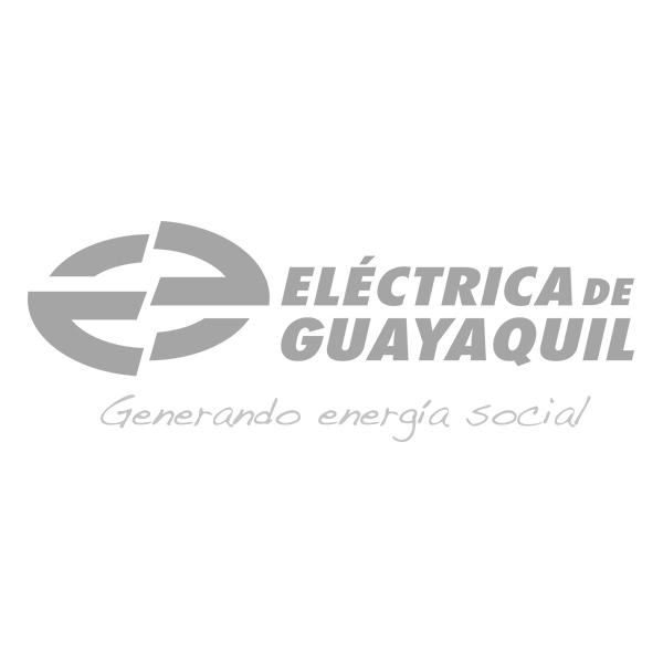 04-ElecGye.jpg