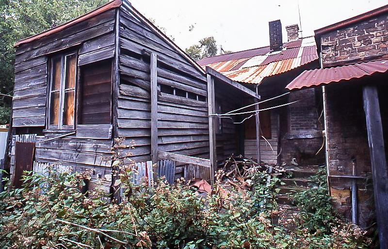 Scott St backyard, 1980s