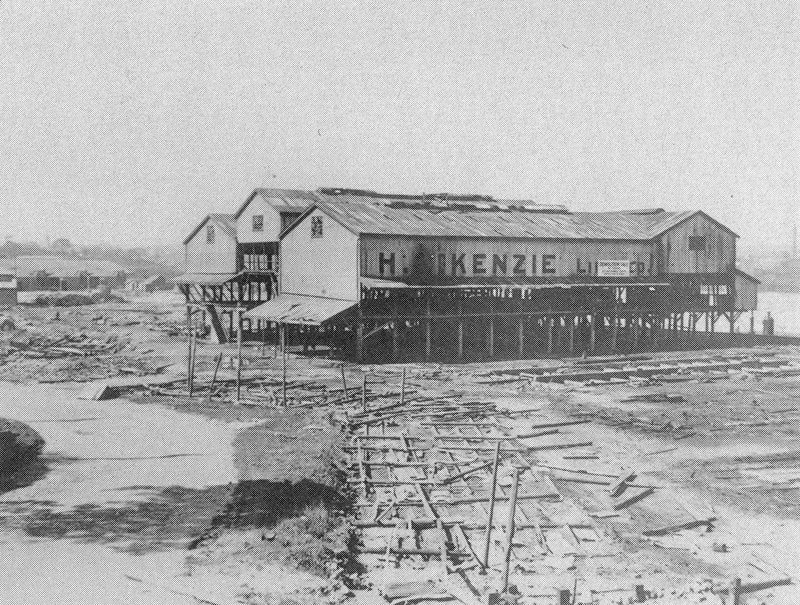 McKenzie sawmill Blackwattle Bay 1899