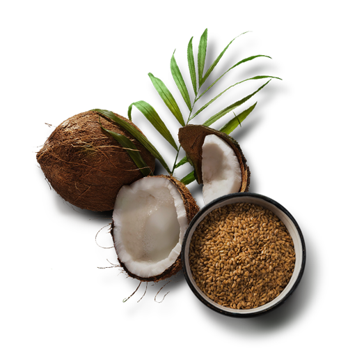 coco-flax.png