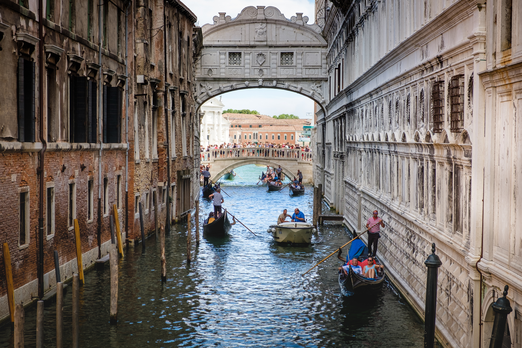 Photo of the Bridge of Sighs in Venice taken by Trevor Sherwin