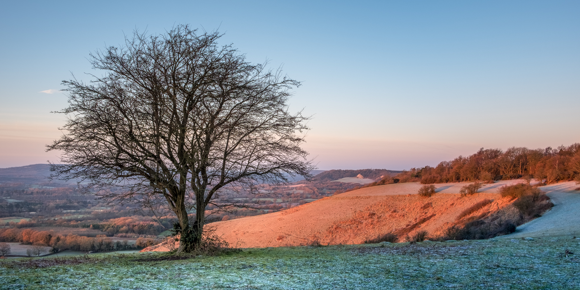 Photo of Colley Hill on a frosty morning taken by Trevor Sherwin