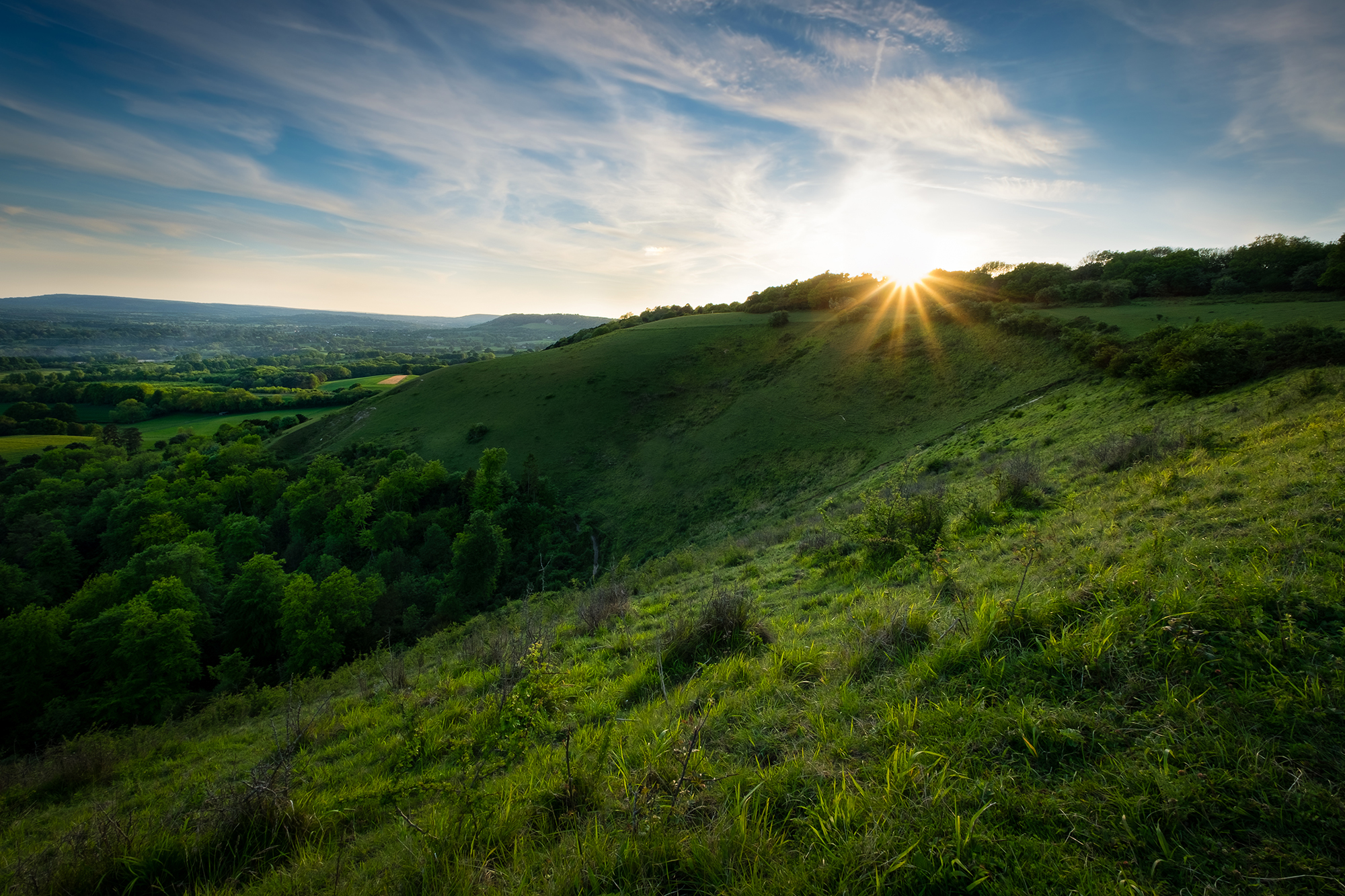 Photo of Colley Hill in Surrey at sunset taken by Trevor Sherwin