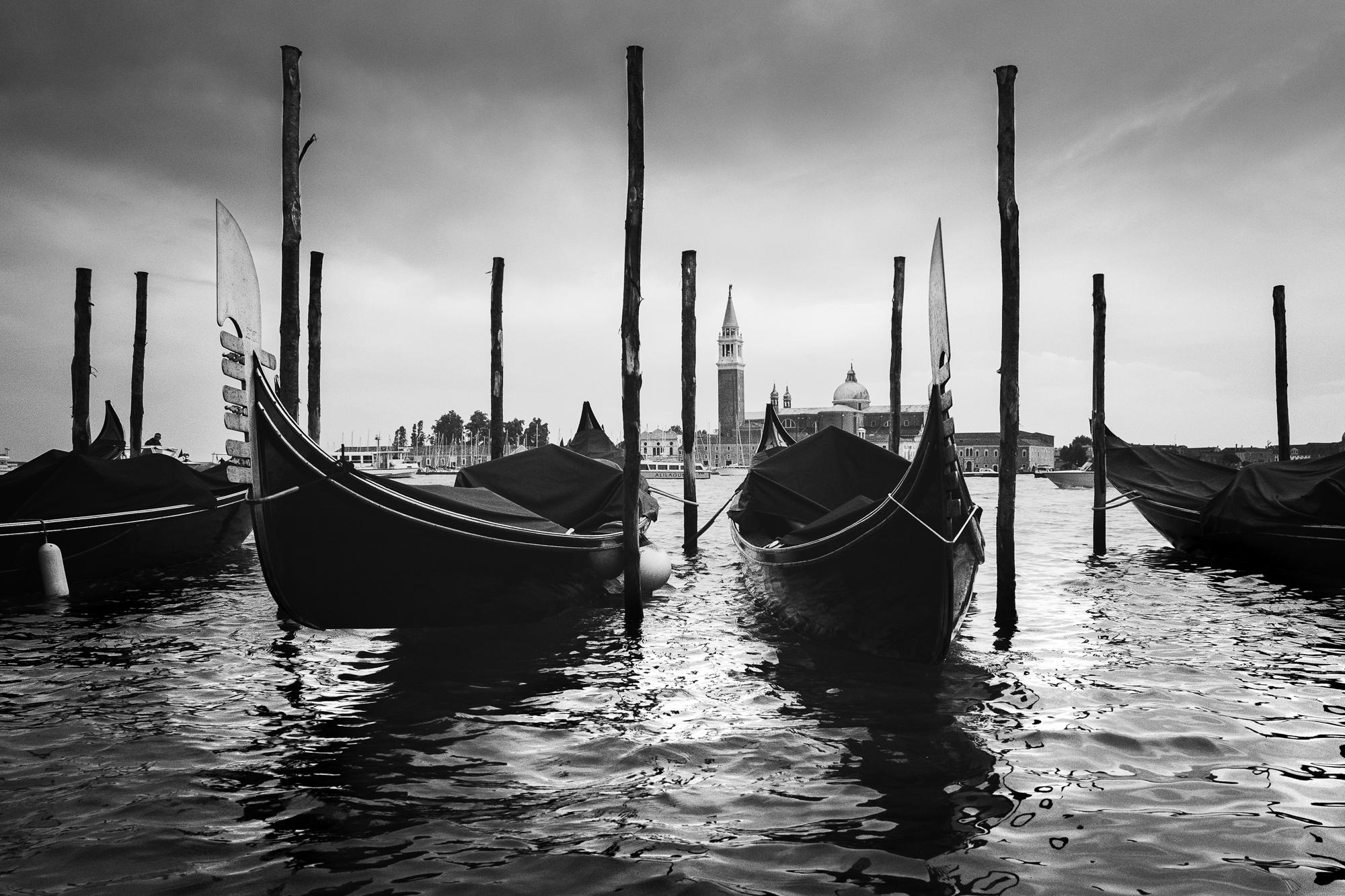 A photo of Gondolas in Venice on the San Marco Basin taken by Trevor Sherwin