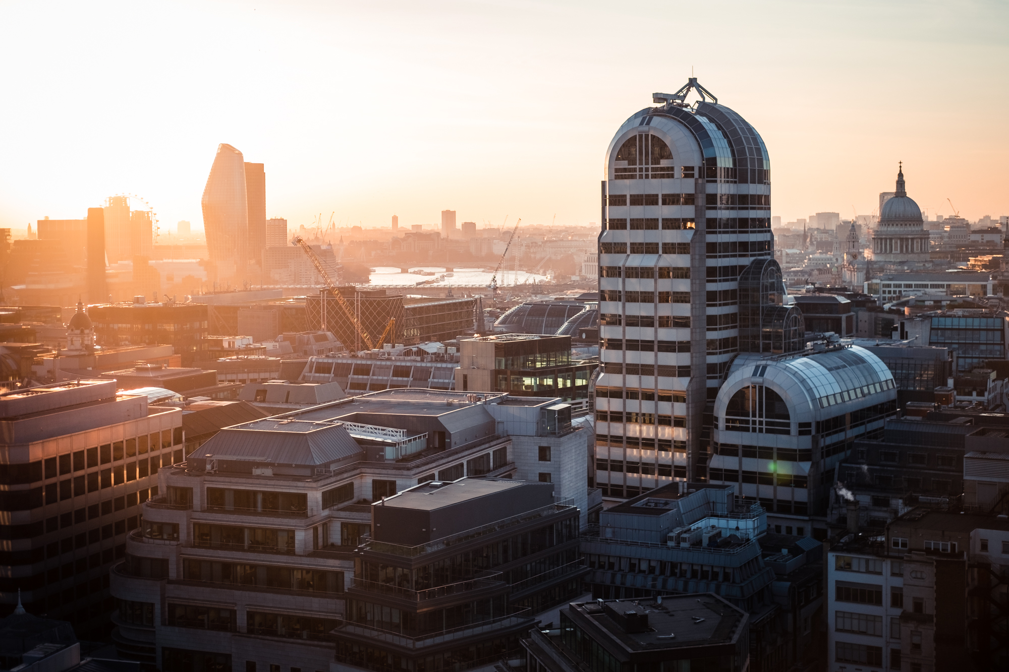 A photo of West London at St Pauls Cathedral taken from Garden at 120 in London by Trevor Sherwin
