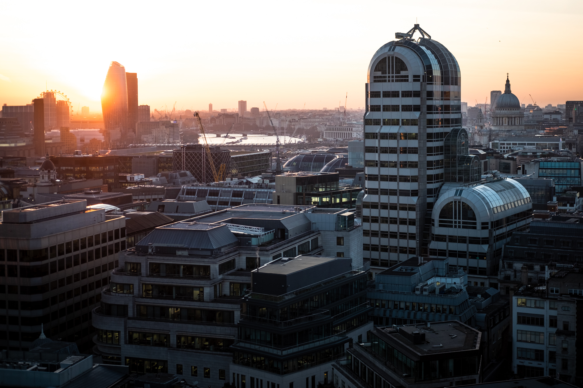 A photo of West London and St Pauls Cathedral taken from Garden at 120 in London by Trevor Sherwin