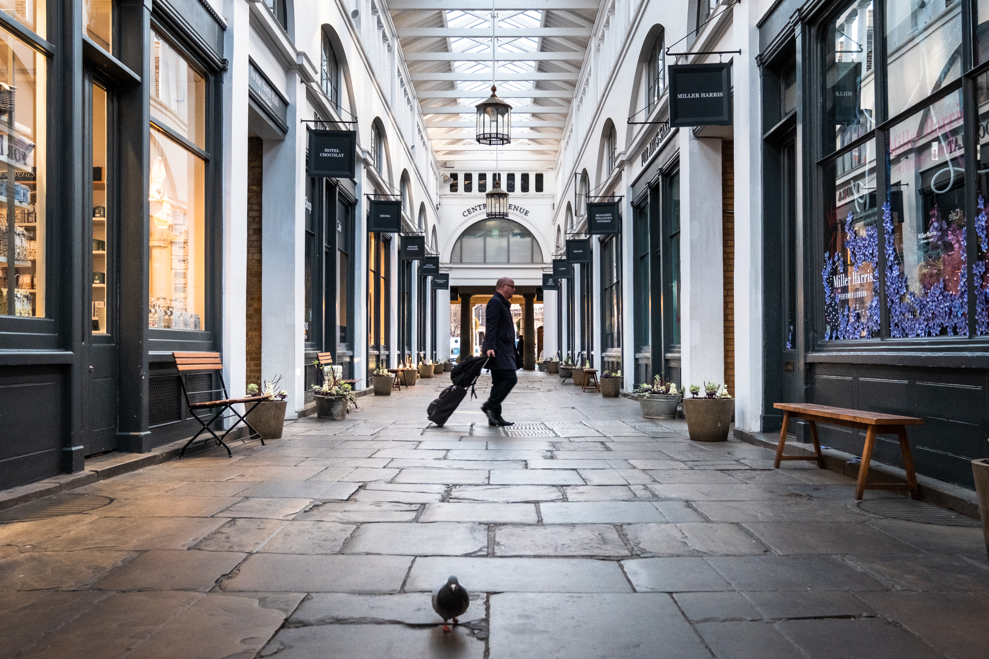 A photo of a man and a pigeon walking in the market building, Covent Garden, London taken by Trevor Sherwin
