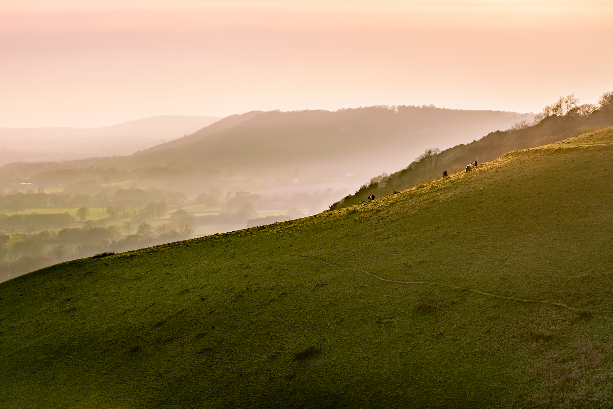 170403 - Surrey - Sunset - Colley Hill 002.jpg