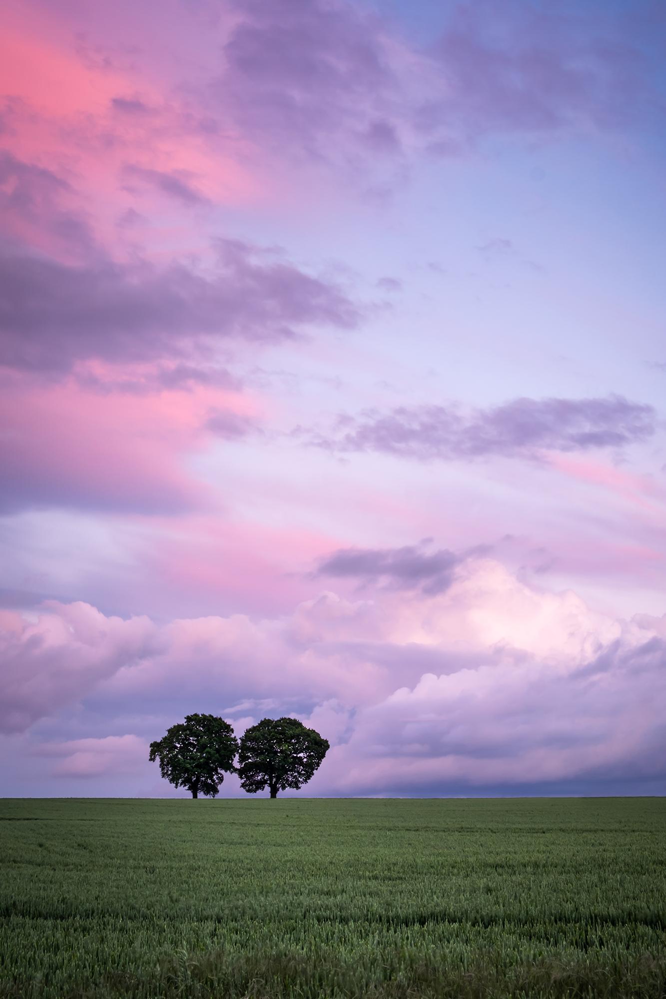 170603 - Surrey - Sunset - Chaldon Field 007.jpg