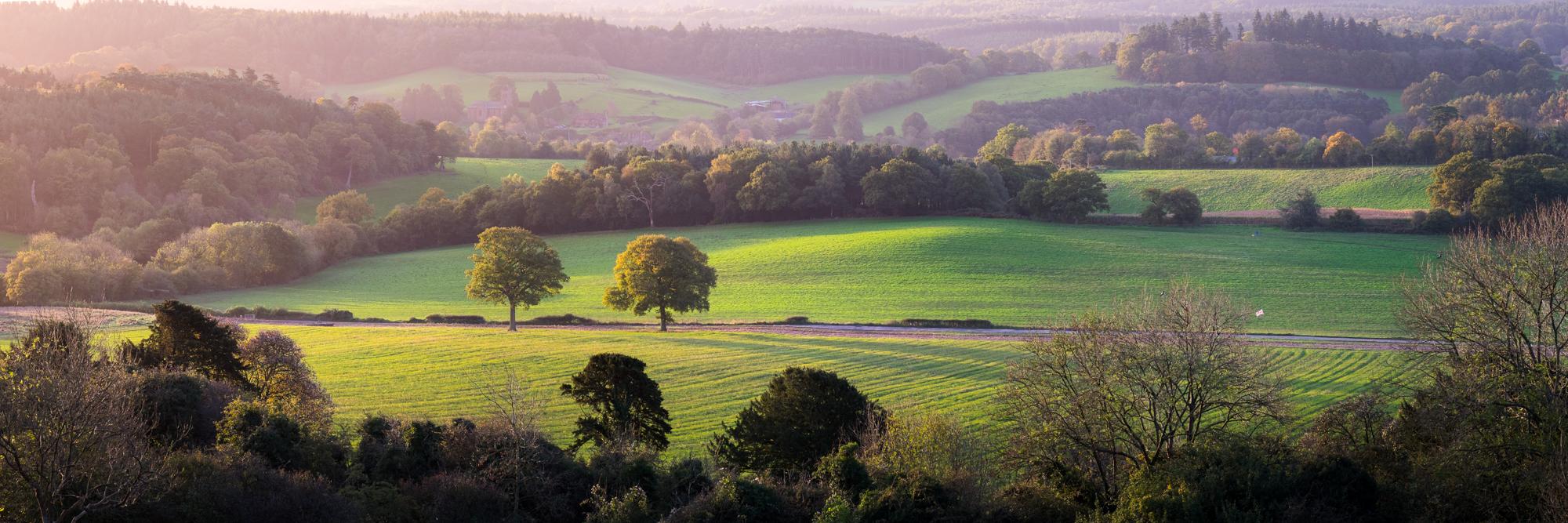 171022 - Surrey - Sunrise - Newlands Corner 003.jpg