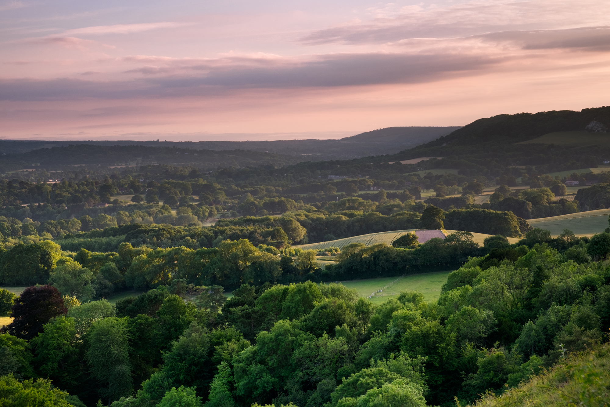 170707 - Surrey - Sunset - Colley Hill 004.jpg