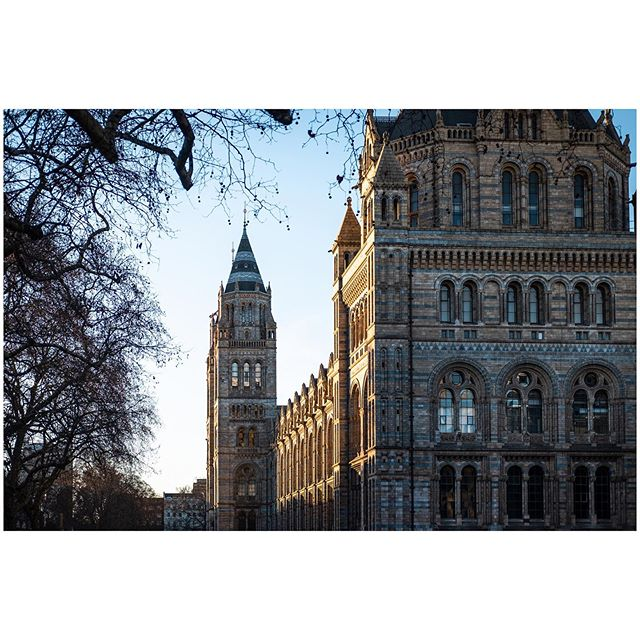 The last photo I took of the Natural History Museum.