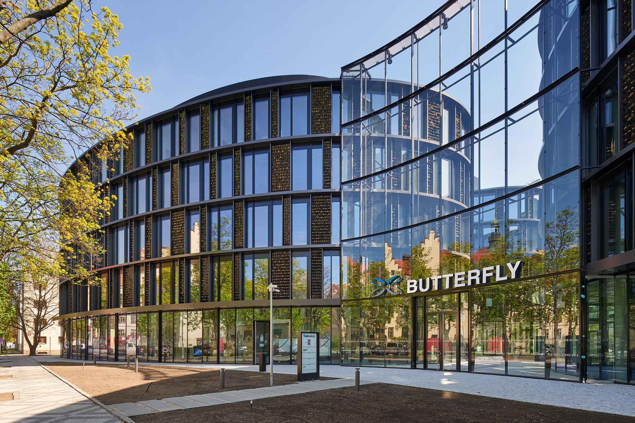 AFFI Butterfly