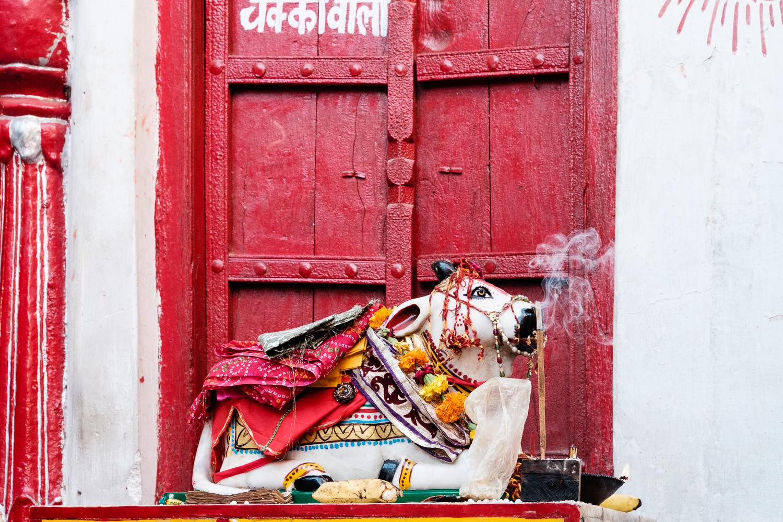 AL161111_Pushkar_5891.jpg